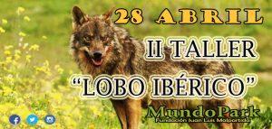 II lobosweb